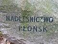 Lasy chojnowskie głaz Płońsk fot Kamil Korbik MojePiasecznoPl.jpg