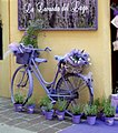 Lavender (14392723780).jpg