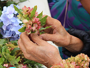 Lei (garland) - Wili method of making leis