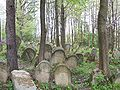 Lesko-cmentarz żydowski.JPG