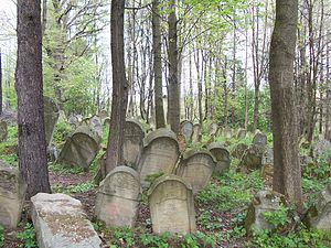 Lesko County - Image: Lesko cmentarz żydowski