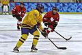 Lillehammer 2016 - Women hockey - Sweden vs Switzerland 23.jpg