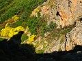 Limestone - panoramio.jpg