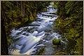 Linn County, OR, USA - panoramio (12).jpg