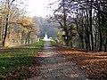Loex, Promenade le long du Rhone - panoramio (24).jpg