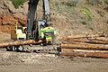 Log cutter03.jpg