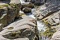 Lolaia River-9071.jpg