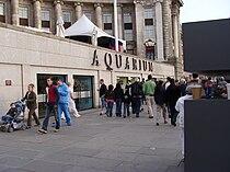 London Aquarium.001 - London.JPG