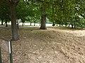London July 2010 (4828460242).jpg