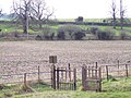 Looking across to the railway from St Nicholas Churchyard - geograph.org.uk - 327162.jpg