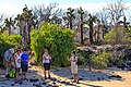Lots of cactus plants - Julio gives the group some more historical details - (16493727619).jpg