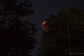 Luna rossa 01 (42791801585).jpg
