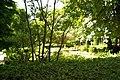 MADRID A.V.U. JARDIN BOTANICO VISTAS - panoramio (2).jpg