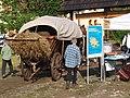 MDDK 2012 - Zagroda Maziarska - Łosie - 26-27 maja 2012 (7300725194).jpg