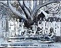 Mahajanga Boabab 1902 - panoramio.jpg