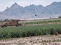 Maiwand, Afghanistan - panoramio (9).jpg