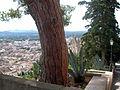 Mallorca-05-0016.jpg