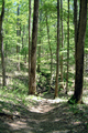 Mammoth Cave National Park path.png