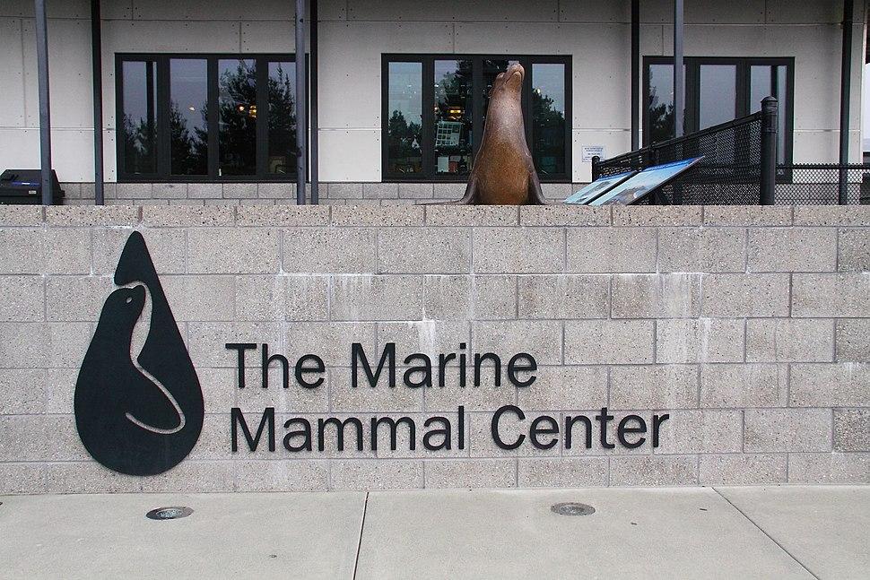 Marin Marine Mammal Center