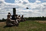 Marines share their knowledge, experience with congressional staffers at Marine Day 2011 DVIDS403564.jpg