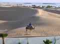 Marokkanische Impressionen - ein Berber und sein Kamel im Abendlicht.png