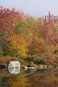 Marshfield Pond October 2021 008.jpg