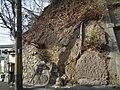 Maruyama thrust fault 丸山衝上断層 DSCF2135.JPG