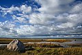 Matsalu lahe rannajoon.jpg