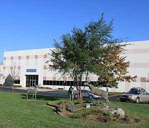 McKesson Corporation - McKesson Pharmacy Systems, Livonia, MI
