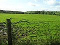 Meaghy Townland - geograph.org.uk - 1478509.jpg