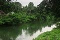 Meenachil river HS-4939.jpg