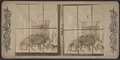 Menagerie, Central Park, New York, from Robert N. Dennis collection of stereoscopic views.png