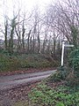 Mid Devon , Signpost and Country Road - geograph.org.uk - 1267814.jpg
