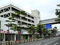 Mizusawa maple 03.jpg