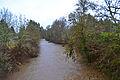 Mohawk River.jpg