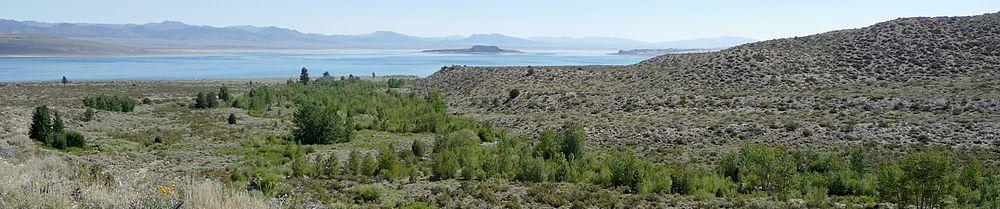 Hügelkette mit dem baumbestandenen Unterlauf des Lee Vining Creek, im Hintergrund der See mit den beiden größten Inseln