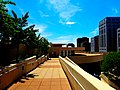 Monona Terrace Rooftop - panoramio (4).jpg