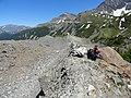 Mont Fortin, Val Veny (30806256157).jpg