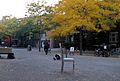 Montréal quartiers divers 617 (8212998697).jpg