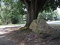 Monument Radio Kootwijk (30944308650).jpg