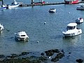 Morbihan Quiberon Port Maria Aigrette 22032016 - panoramio.jpg