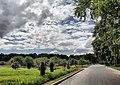 Moscow, VNDKh, road into Michurin Garden (483).jpg