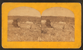 Moss River, Tennessee?, from Robert N. Dennis collection of stereoscopic views.png