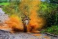 MotoSport 1.jpg