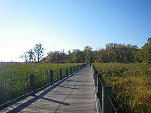 Mount Vernon Trail - Image: Mount Vernon Trail Dyke Marsh