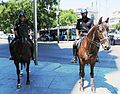 Mounted police in Madrid 03.JPG
