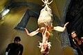 Mujer observa un pollo en el Antiguo Colegio de San Ildefonso.jpg