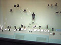 Museum of Anatolian Civilizations013.jpg