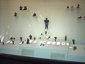 Museum of Anatolian Civilizations013.jpg