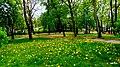 Nakło nad Notecią Park im. Jana III Sobieskiego Polska - panoramio.jpg